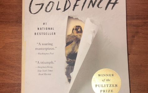 In Defense of The Goldfinch
