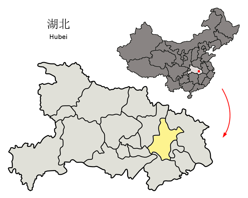 Wuhan, the capital of Central China's Hubei province, is where the novel coronavirus was first identified in December 2019. Wuhan has a population of over 11 million people and is central China's main industrial and commercial center and an important domestic and international transport hub.